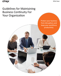 PDF – Guidelines for Maintaining Business Continuity for Your Organization
